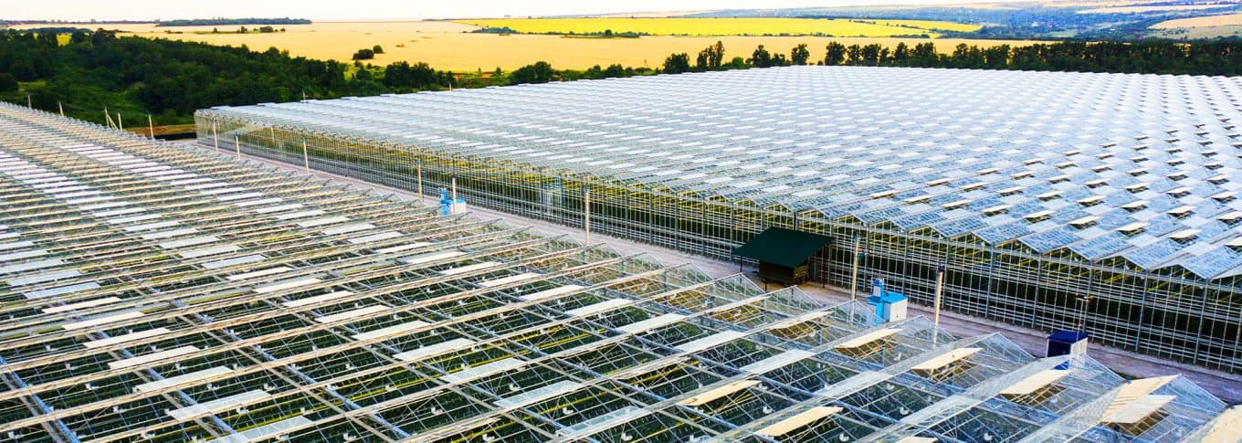 Irrigation Systems for Greenhouses